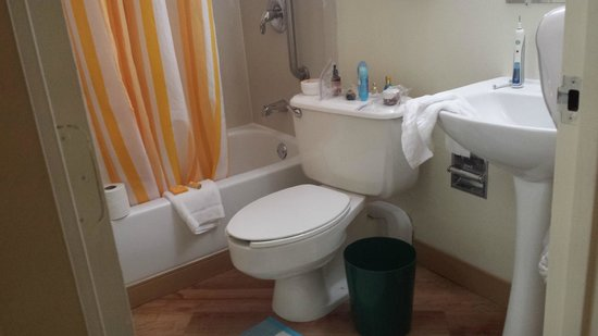 La Quinta Inn & Suites Stamford / New York City: small-the toilet was on an angle-no amenities
