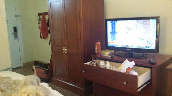 La Quinta Inn & Suites Stamford / New York City: small room but new flat screen tv