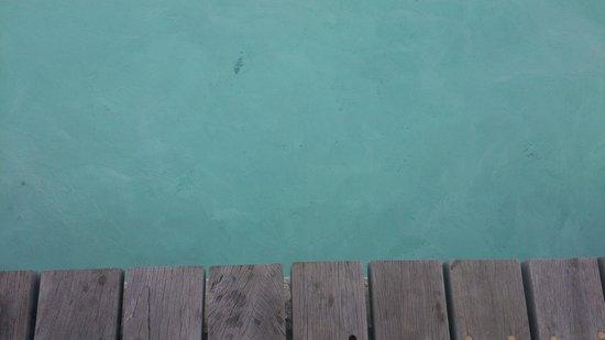 Cinnamon Hakuraa Huraa Maldives: rays