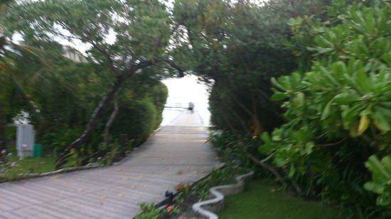 Cinnamon Hakuraa Huraa Maldives: grounds