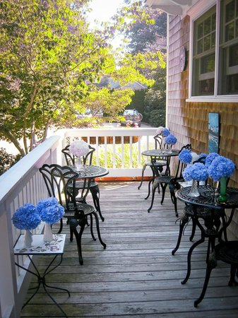 Palmer House Inn: Hydrangea ready for breakfast on the porch.
