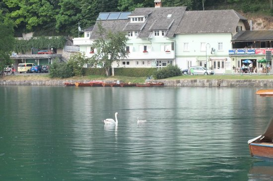 Pension Pletna: View of hotelduring one of our rowing boat trips. Peaceful.