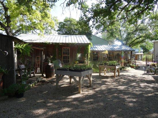 Fredericksburg Herb Farm - Sunday Haus Cottages: gardens