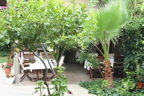Hotel Villa Monte: kahvaltı / yemek bölümü