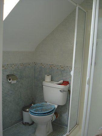 Craglea Lodge: Habitación familiar_baño