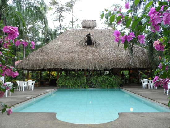 Hotel La Palapa Eco Lodge Resort: Pool area