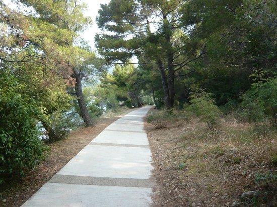 Camp Kovacine: la passeggiata verso gli scogli