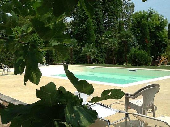 Park Hotel Elefante Verona Italy