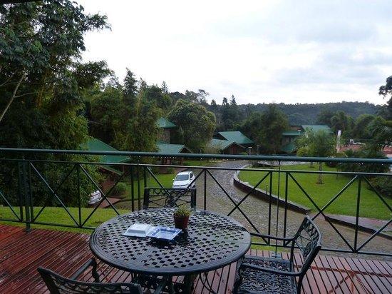 Iguazu Jungle Lodge : Vista de las cabañas muy hermoso