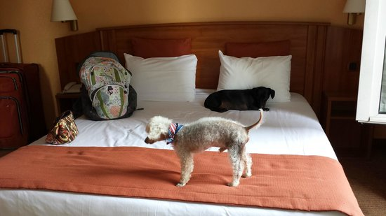 Timhotel Paris Gare Montparnasse : the boys checking out the comfiness of the bed