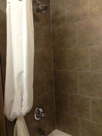 Best Western Blairmore: Shower