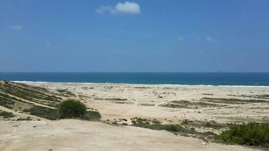 Palmachim Beach: ים