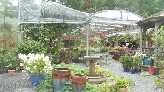 ORIGINS Cafe at Carefree Gardens in Cooperstown, NY