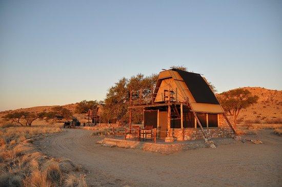 Camp Gecko Tented Camp : Zeltunterkunft