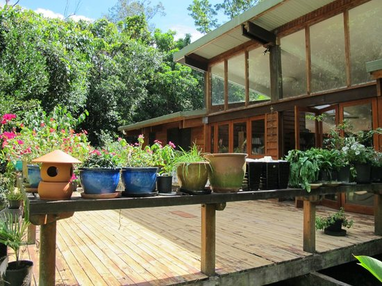Cow Bay Homestay: the back deck, great for bird watching