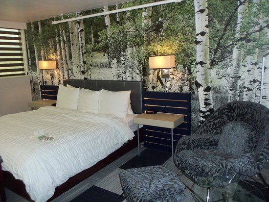 The Rushmore Hotel & Suites: Aspen/Birch Tree Mural