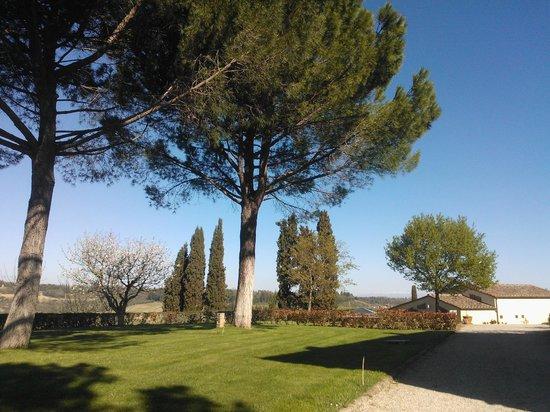 Poderi Arcangelo Agriturismo Farmhouse : the garden
