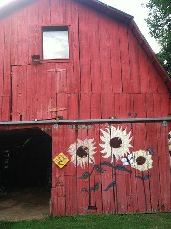 Engadine Inn & Cabins : Really cool, old barn
