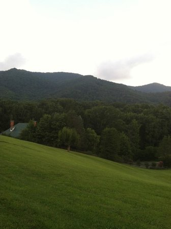 Engadine Inn & Cabins : View from the grounds