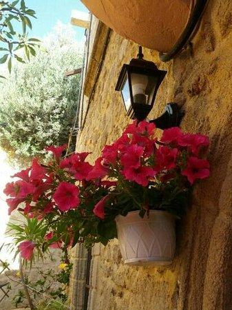 Hotel Attiki : basta un vaso di petunie all'ingresso per colorare la tua vacanza