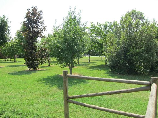 Agriturismo Villa Rosa: park