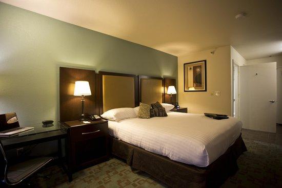 Hotel Vue: King Guest Room