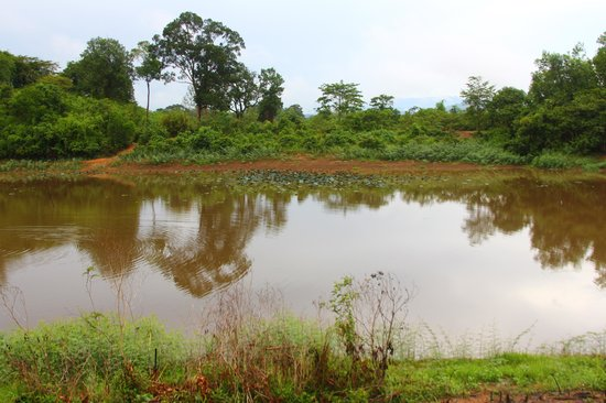 Ta Lai Longhouse: Small lake at the Longhouse