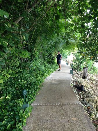 Round Hill Hotel & Villas: Rainforest path to Fitness/Yoga/Spa/Beach