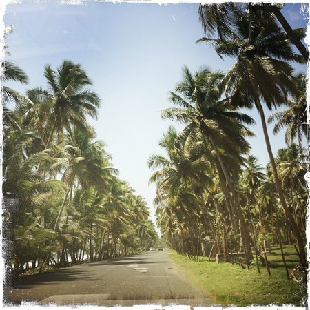 Natura Cabana Boutique Hotel & Spa : Along road #5