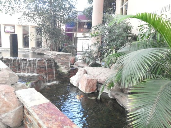 Crowne Plaza Concord: waterfall