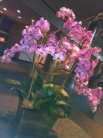Omni Houston Hotel Westside : Fresh flowers throughout the hotel