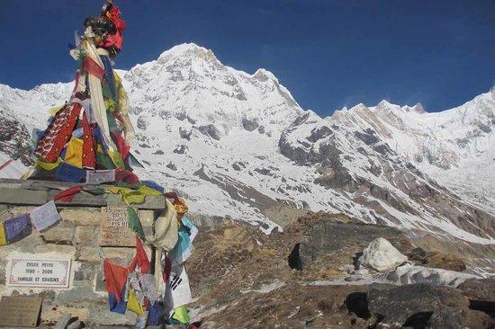 Trekking Team Pvt. Ltd. - Day Tours: View at Annapurna Base Camp