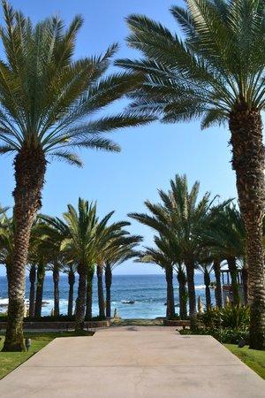 Esperanza - An Auberge Resort: Pool view