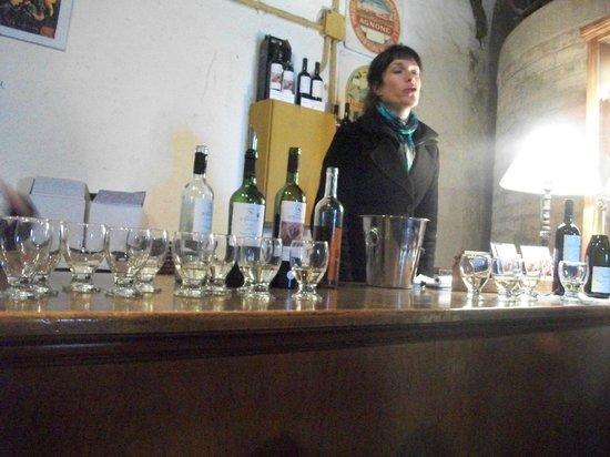 Ditommaso Winery and Restaurant: degustacion