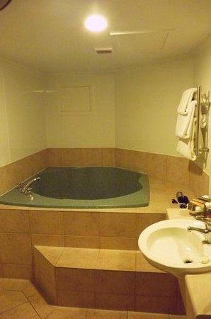 Silver Fern Rotorua - Accommodation and Spa: Standard Studio(Bathroom)