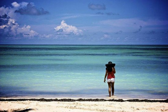 Cocoplum Beach Hotel: Hotel beach
