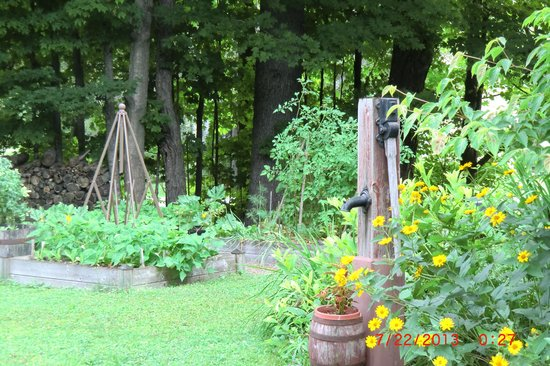 Bethel Hill Bed and Breakfast: Garden at side of Bethel B&B