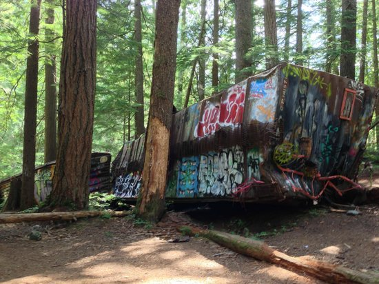 The Whistler Train Wreck Trail: Cars covered with graffiti lying on their side in the woods.