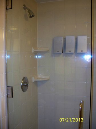 Dolce Basking Ridge: Modern Shower