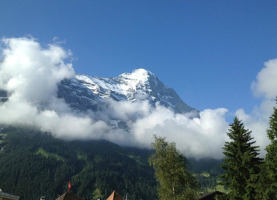 Hotel Restaurant Alpina Grindelwald: Just try to beat this view from the room!