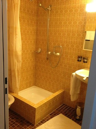 Hotel Adler: Decent size bathroom - and that's the shower curtain