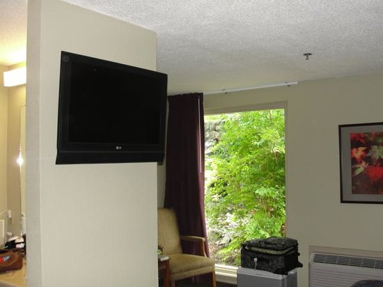 DeGray Lake Resort State Lodge: sitting area/tv
