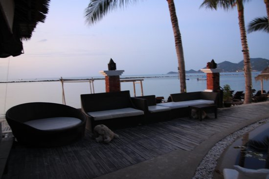 Dara Samui Beach Resort: Chilling beachfront resort