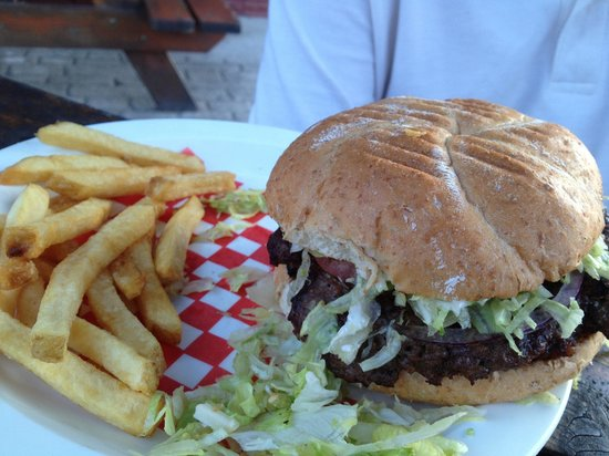 The Nomad: Good size burger and fries. Not child size portions!