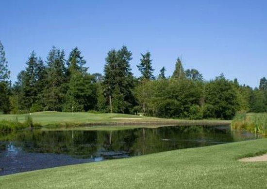 Loomis Trail Golf Club: Loomis Trai - Hole 16