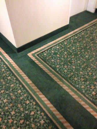 La Quinta Inn & Suites Seattle Bellevue / Kirkland : Hallway dirty carpet