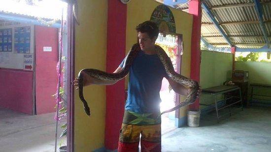 Samui Snake Farm: :)