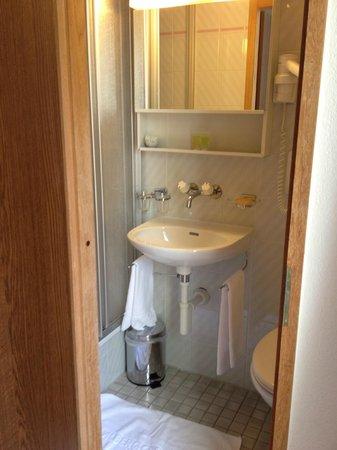 Albergo Stella Hotel: bathroom