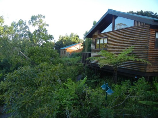 Knysna Tonquani Lodge & Spa: Cottages with tropical surroundings