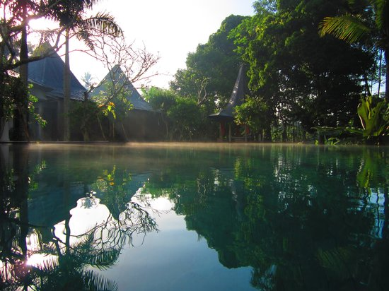 Pandawas Villas: Stunning morning mist over the pool